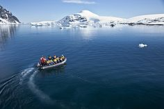 Remote and untamed, Antarctica is a wildlife paradise and adventurer's playground.