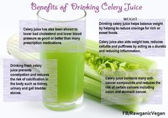 Celery juice is highly nutritious and one of the most hydrating foods we can put in our bodies. Because it is incredibly alkalizing, it equalizes the body's PH, which is vital for peak health. The minerals & vitamins and nutrients are in perfect harmony with each other. Celery leaves are high in vitamin A, whilst the stems are an excellent source of vitamins B1, B2, B6 & C & dense in potassium, folic acid, calcium, magnesium, iron, phosphorus, sodium and essential amino acids.