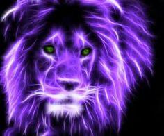 Lion fractal =^..^=