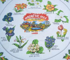 """1960s Souvenir tablecloth - Magnetic Hill, Moncton, New Brunswick, Canada - """"Where Cars Coast Uphill!"""""""