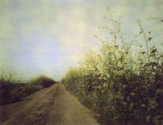 The Path - Erin Malone pinhole photography