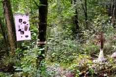 KARDO KOSTA: YVES CHEDEL-LAND ART BIEL-BIENNE 2014