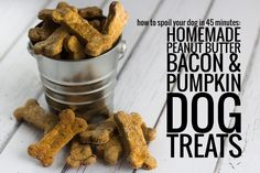 How to Spoil Your Dog in 45 Minutes: Homemade Peanut Butter, Bacon and Pumpkin Dog Treats.They need healthy treats too! Bacon Dog Treats, Pumpkin Dog Treats, Puppy Treats, Diy Dog Treats, Homemade Dog Treats, Dog Treat Recipes, Dog Food Recipes, Get Thin, Homemade Peanut Butter