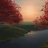 Red maple trees by the river at sunset HD wallpaper Trees With Red Leaves, Red Maple Tree, Photo Calendar, Autumn Nature, Autumn Leaves, Tree Wallpaper, Wallpaper Desktop, Wallpapers, Nature Plants
