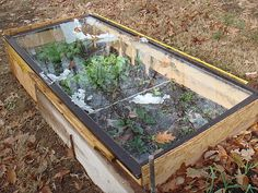 I want to make a cold frame