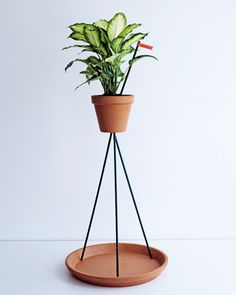 Flower Pot Stand by Industrial Facility