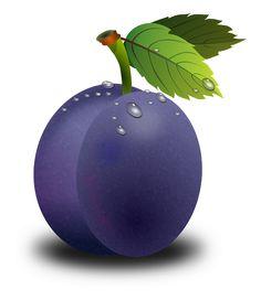 Amêixoa, Blomme, Frugt, Frugter, Orchard, Natur