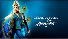 30 Ideas De Temática Circo Del Sol Circo Del Sol Circo Cirque Du Soleil