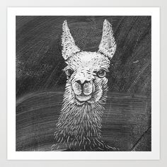 Black White Vintage Funny Llama Animal Art Drawing Art Print by Railton Road - $15.00