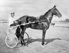 Dan Patch set the world's record for the fastest mile by a harness horse (1m:55s) in 1906. He retired undefeated, having never lost a race, as the holder of nine world records. I love harness racing