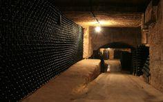 Caves domaine Les Cordeliers, Saint Emilion