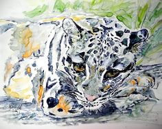 Nebelparder - Clouded Leopard  Aquarell von Sylvia M. Lang
