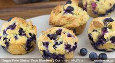 Sugar Free Gluten Free Blueberry Cornmeal Muffins