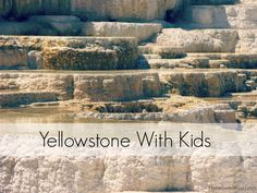 Planning a Trip to Yellowstone National Park with Kids?  Awesome!  What to Expect, FREE Resources & Tips to Help You Get the Most out of Your Time There!  #yellowstone #nationalparks #familytravel http://homesweetroad.com/yellowstone-national-park-kids/