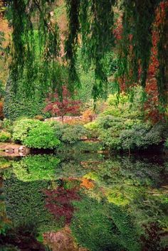 Butchart Gardens, Victoria, B C --Wonder if they'd let me build a place right there by the water?