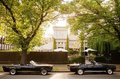 Mustangs in Black 1966 Shelby GT350 and 1967 GT Convertible Ford Mustangs at The Willows for Simone and Mark's wedding.