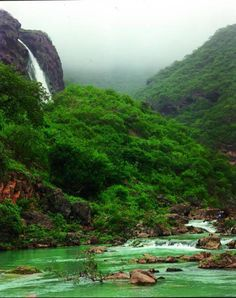 Salalah, Oman   (Lush green mountains right by the deserts of Arabia)