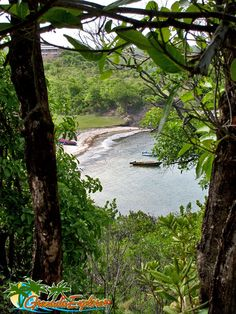 Crochu Beach, St.David, Grenada This is where I was born and raised.