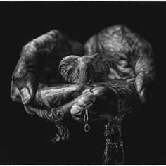 Dramatic Hyperrealism Drawing Infused with Surrealism by Jono Dry