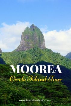 Moorea Circle Island Tour - The World Is A Book See the sights and attractions as we drive around the island of Moorea in French Polynesia. Take a tour into the best overlook, a lunch at the beach and turtle rehab center. Bora Bora, Maldives, Moorea Tahiti, Polynesian Islands, Island Tour, Travelling Tips, South Pacific, French Polynesia, Island Life