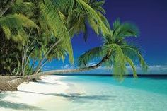 Znalezione obrazy dla zapytania piękna plaża