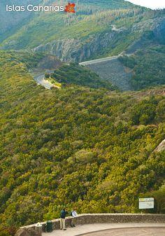 Parque Nacional de #Garajonay. La #Gomera.