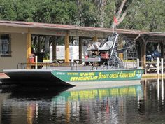 Who me, run?: Boggy Creek Airboat Rides