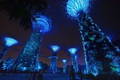 the supertrees at gardens by the bay one of six landmarks in singapore that were - Garden By The Bay East Car Park
