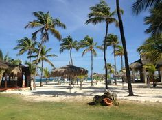 Manchebo Beach Resort & Spa: View from the patio