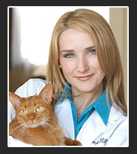 In this episode of ER VET, Dr. Ruth MacPete, veterinary author of the children's book Lisette the Vet on Pet Life Radio. Cute Animal Pictures, Dog Pictures, Large Animals, Cute Animals, Becoming A Veterinarian, Pet Allergies, Pet Vet, Fancy Cats, Pet Life