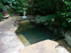 "Garden pool designed and built by the owner,  Jim Scot. Located in Lake Martin, Alabama. Photo by Martha Tate from her blog ""Garden Photo of the Day""."