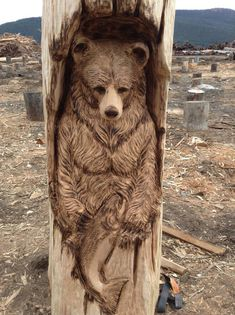 Pete showed why he's known worldwide for his wildlife carvings with his stunning bear.