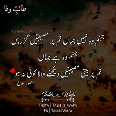 795 Best Aqwal E Zareen images in 2019 | Urdu quotes, Manager quotes