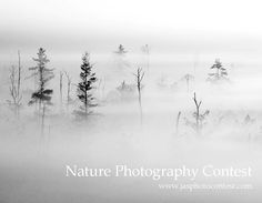 Nature Photography Contest - ends 30 June, 2013