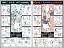 Dumbbell Workout Professional Fitness Wall Chart Combo - Fitnus Posters Inc. Arm Workout Men, Good Arm Workouts, Forearm Workout, Best Chest Workout, Chest Workouts, Dumbbell Workout, Gym Workouts, Chest Exercises, Wall Workout