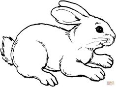Coloring Pages Bunny Hasen Ausmalbilder Ostern Bunny Coloring Pages Rabbit Drawing Intended For Haschen Ausmalbilder - Kroblo Easter Bunny Colouring, Bunny Coloring Pages, Farm Animal Coloring Pages, Coloring Pages To Print, Coloring For Kids, Coloring Pages For Kids, Coloring Book Pages, Egg Coloring, Coloring Sheets