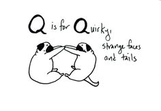 Pug Alphabet - Q (Q is for quirky, strange faces and tails)