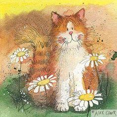Cat & Daisies by Alex Clark