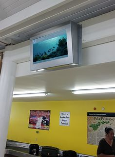 "The URway iCover ""o"" (o = outdoor) Enclosure w/ Sunlight Readable screen, two were installed for NOAA and the Fagatele Bay National Maine Sanctuary in the beautiful Samoa Islands open air airport. Sunlight, Islands, Maine, Free, Outdoor, Beautiful, Outdoors, Sun Light, Nikko"