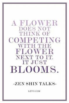 Good Morning Beautiful Flowers,  A Flower  Does Not Think Of  Competing With The Flower Next To It.  It Just Blooms. ~ Zen Shin Talks  Do not worry about what everyone else is doing.  Just stay focused and pay attention to the direction you are heading. You will succeed...  #GoodMorning #ChallengeOneself #Lifequotes #Motivation #Inspiration