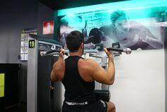 Exercício: Polia Articulada Neutra. Grupo muscular: Bíceps. Execução correta…