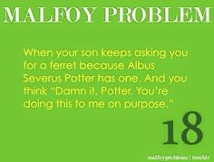 Malfoy Problem...<<Little does the kid know he already HAS a ferret, sort of...
