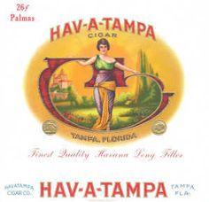 Hav-A-Tampa box