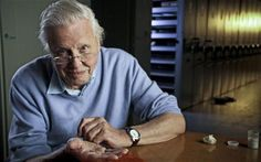 Sir David Attenborough: If we do not control population, the natural world will