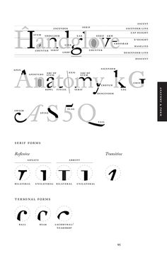 Anatomy Typography
