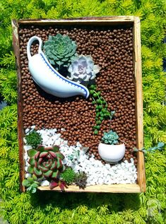 13 Laying Succulent Arrangements That's A True Delight - HomelySmart - garden landscaping Succulent Landscaping, Succulent Gardening, Succulent Terrarium, Cacti Garden, Landscaping Ideas, Garden Landscaping, Succulent Arrangements, Cacti And Succulents, Planting Succulents