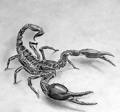 Black and gray 3D scorpion. Style: Black and Gray. Color: Black. Tags: Cool, 3D, Awesome