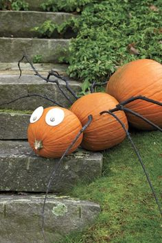 Spindly Spider: Turn three gourds on their side to make this spider. Button eyes and branch legs complete the creepy crawly creature. This no carve pumpkin idea works perfectly as a Halloween party decoration.Find more easy, fun and Halloween inspired no carve pumpkins ideas here.