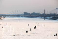 Fun on The Frozen Danube in Vienna Vienna, Frozen, Beach, Water, Fun, Outdoor, Water Water, Outdoors, Aqua