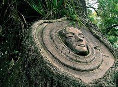 woods trees decoration - Buscar con Google